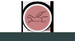 Rozwin Skrzydla - Strona Glówna